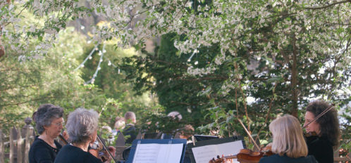 string quartet playing outdoor at wedding ceremony