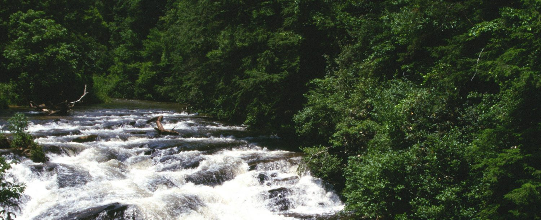 Scenic drives in Georgia