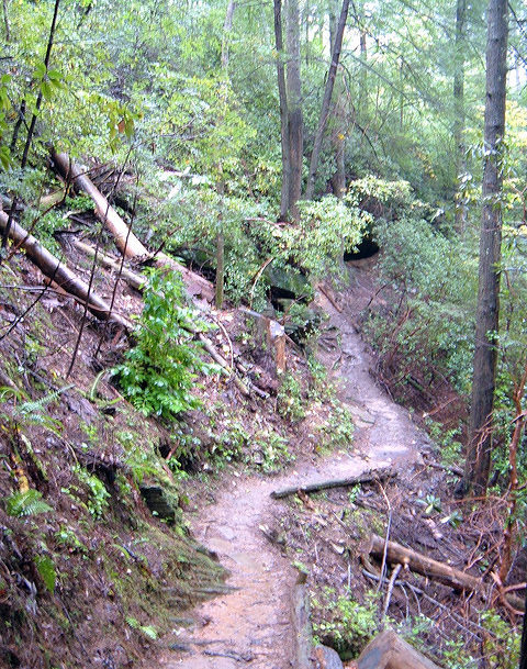 North Georgia Hiking Trails