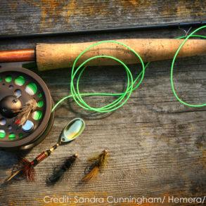 Soque River Fishing