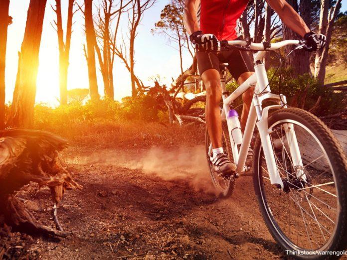 North Georgia mountain biking