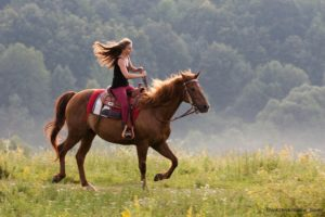 Where to Go Horseback Riding in GA