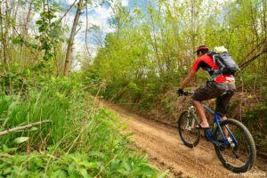 Mountain biking is one of the many things to do in Gainesville, GA