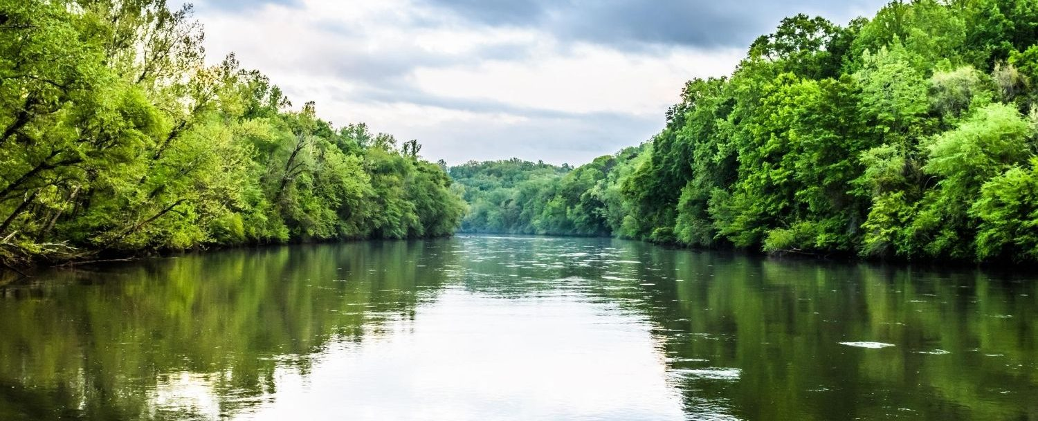 View of a wide river with trees on either side