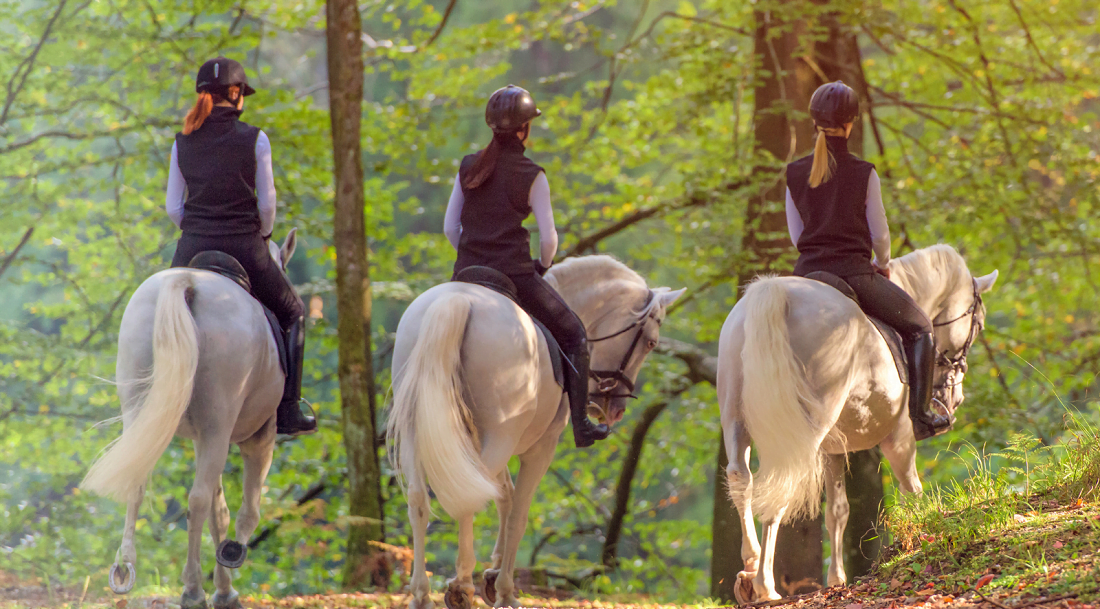 Horseback Riding in Georgia