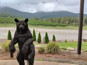 Yonah mountain vineyards bear statue