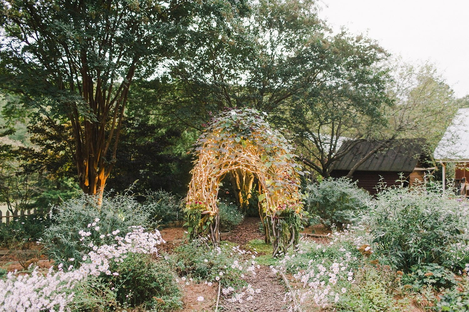 outside image of the garden
