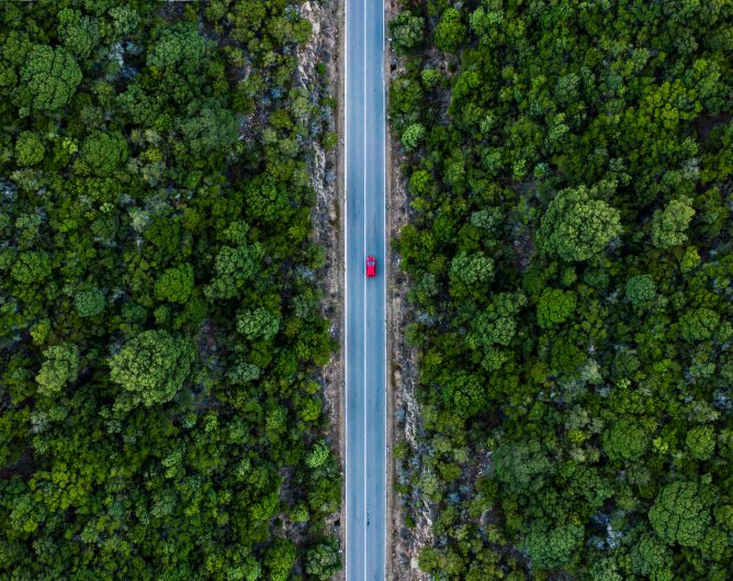 Car driving on the highway surrounded by trees.